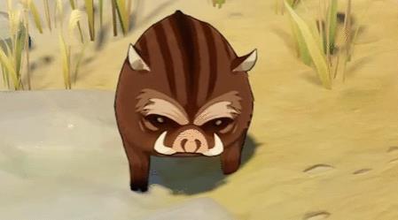 原神野猪在哪里找