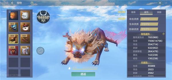 妄想山海云游戏版宠物信息