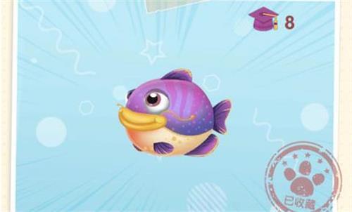 摩尔庄园手游紫色鲶鱼位置一览