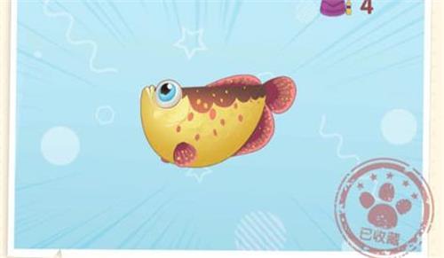 摩尔庄园手游红鳞鱼刷新时间一览