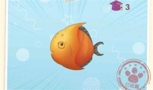 摩尔庄园手游鲳鱼刷新位置介绍