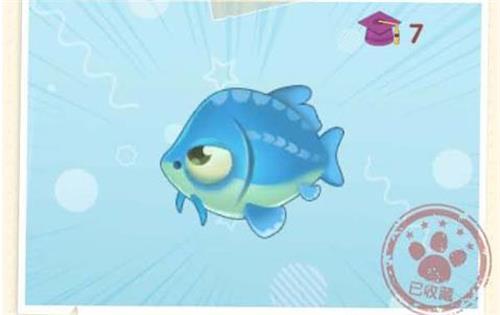 摩尔庄园手游鲟鱼位置一览