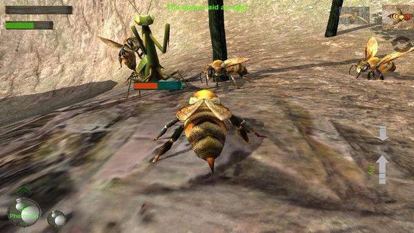 蜜蜂生存模拟器截图3