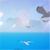 疯狂的海鸥