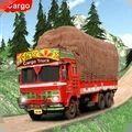印度货运卡车司机
