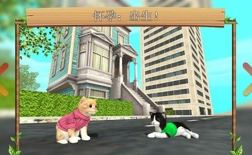 猫咪模拟器中文版截图2