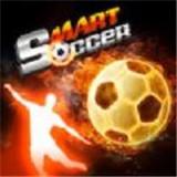 敏捷足球挑战中文版