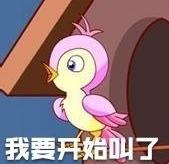 七夕布谷鳥截圖3