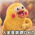 小鹦鹉表情包