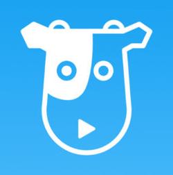 奶牛视频app