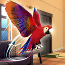 宠物鹦鹉模拟器