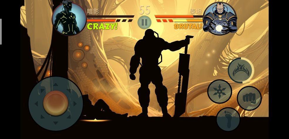 暗影格斗2特别版截图3