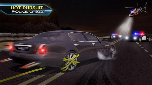 警察公路追逐截图4