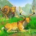 丛林狩猎动物