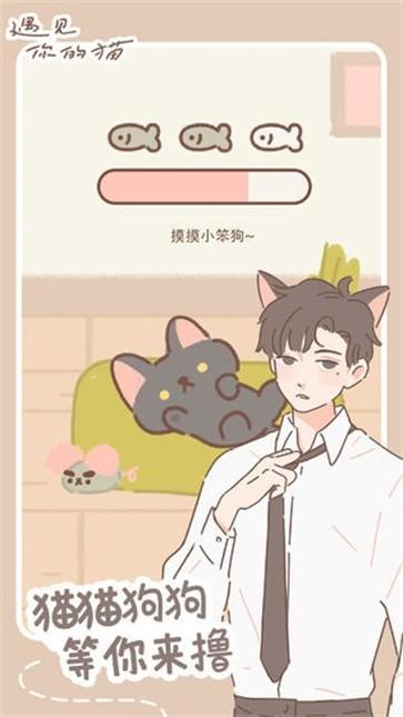 遇见你的猫截图4