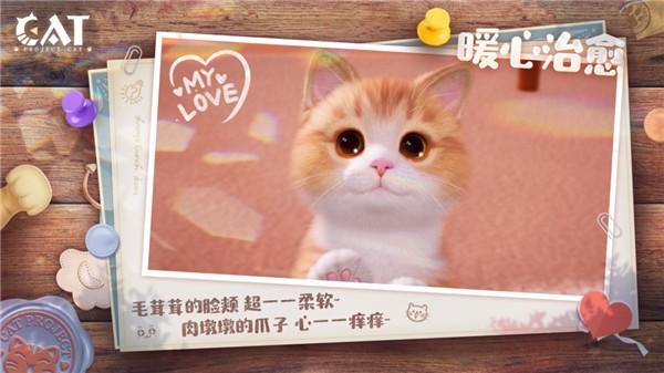Project Cat截图1