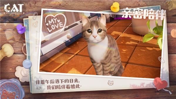 Project Cat截图4