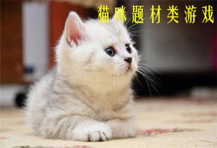 猫咪题材类游戏