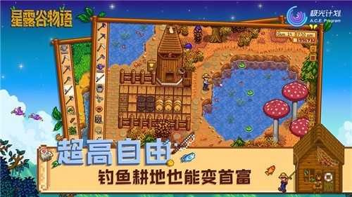 星露谷物语1.5安卓汉化版截图2