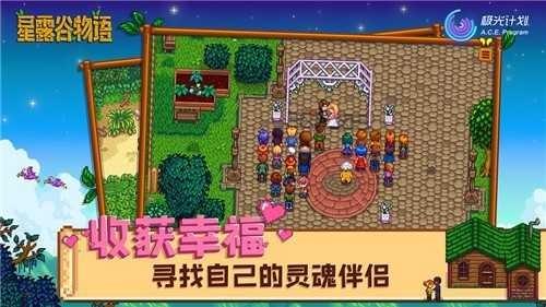星露谷物语1.5安卓汉化版截图3
