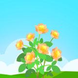 花开有宝红包版