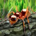 昆虫世界生存指南