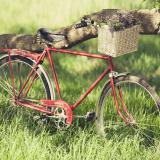 自行车越野模拟