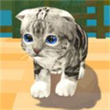 猫咪度假村