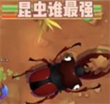 昆虫谁最强