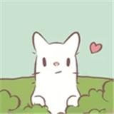 猫汤物语中文版